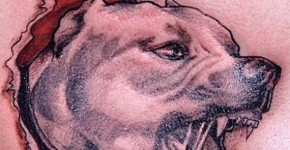 Dog Tattoos For Men