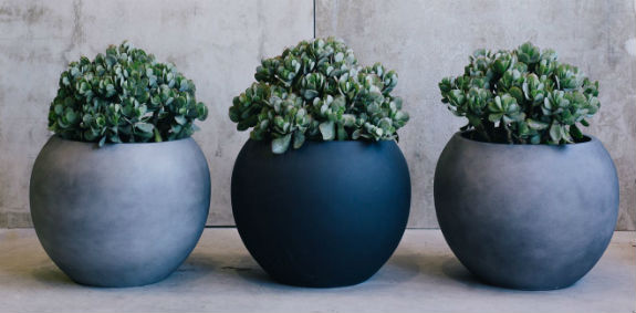 garden-pots-online - Garden Pots: A Modern Gardening Solution - Editors Top