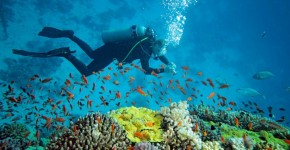diving-equipment