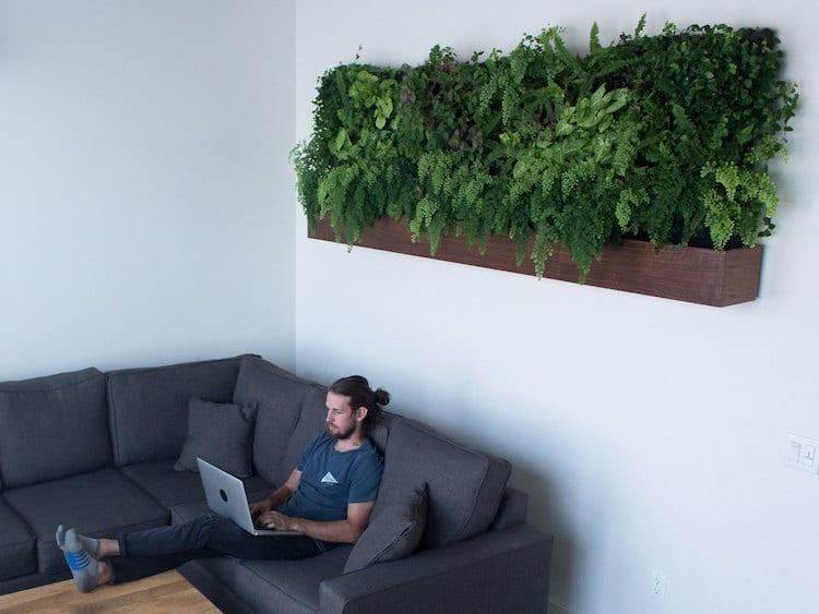self-watering-vertical-garden-1
