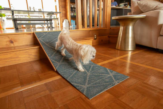 pet ramp for stairs