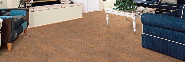 picture of a living room with cork flooring