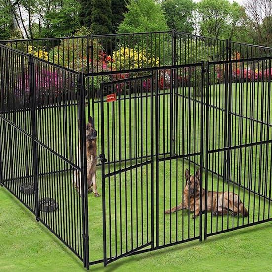backyard modular dog kennel dog run with two german shepards inside