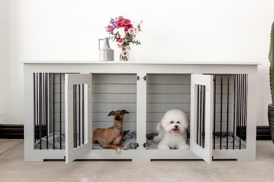dog crate with two doors for two dogs