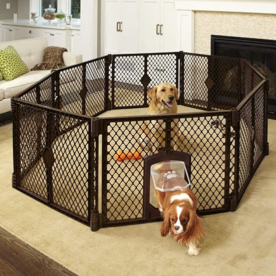 dog play pen with two dogs playing inside