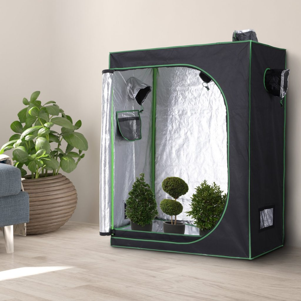grow tent at home
